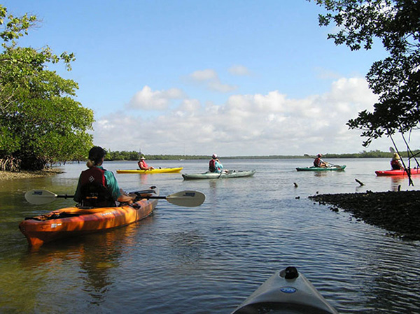 Paddle TC | Kayak Guided Tour 1
